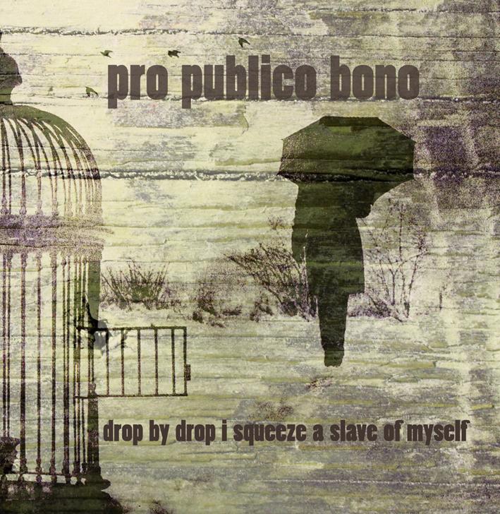 LP_ProPublicoBono_front